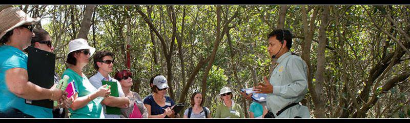 WET Workshop for Professionals -  Wetlands for Blue Carbon: obligations and opportunities